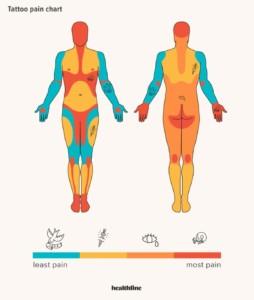 タトゥーの痛みチャート